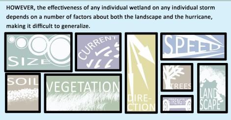The effectiveness of wetlands on a storm depends on landscape and hurricane factors