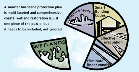 Smart hurricane protection is multifaceted: Wetlands, Levees, Building Codes, Evacuation, Rethinking linear canals.