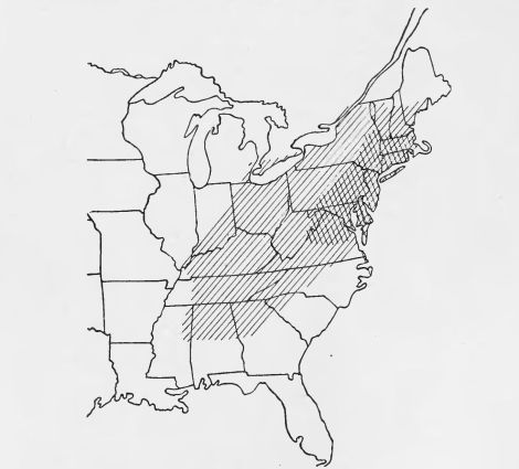 Natural range of the American Chestnut. The cross hatching shows the extent of territory covered by the chestnut blight in 1914 [Arthur H. Graves: The future of the chestnut tree in North America. The Popular science monthly, Volume 84, p553. New York, Popular Science Pub. Co., June 1914. Online: archive.org.]
