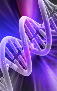 Andrea Laurel DNA Double Helix. From Flickr Creative Commons.