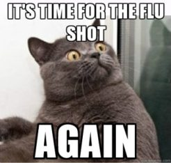 flu-shot-cat-e1473962895844