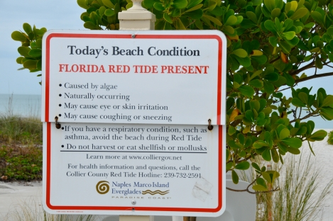Red Tide warning