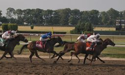 Stretch_of_belmont_stakes_(4675567150)